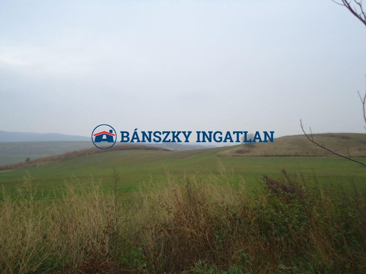 T/523 Piliscsév mezőgazdasági telek
